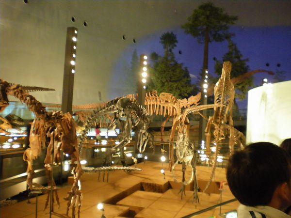 恐竜16.jpg